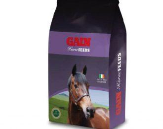 Equestrian Mix